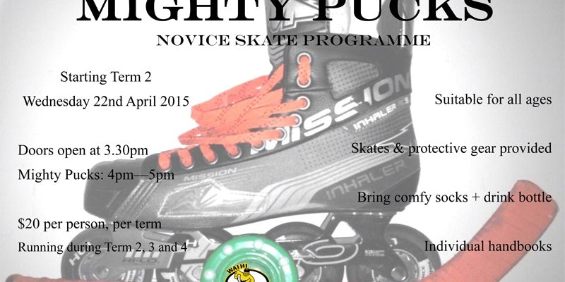 Mighty Pucks Learn To Skate 2015