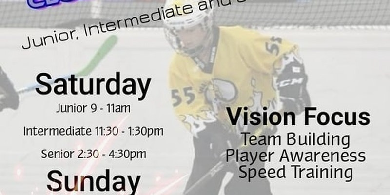 2019 Vision Hockey Club Development Camp